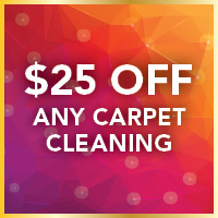 $25 off any carpet cleaning including 3 or more areas